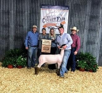 Hunt County Fair 2019: Market Sheep