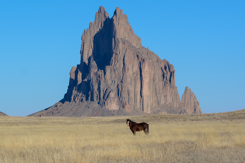 Shiprock_Brown_Horse_Hank_Blum_Photography.jpg
