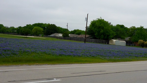 2018 Bluebonnets Galore Ride