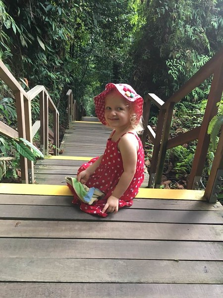 2017 - Singapore - MacRitchie Reservoir Park
