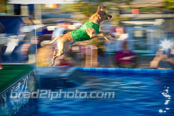 Splash Dogs 2013