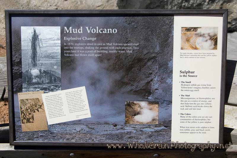 20100713_Yellowstone_2713.jpg