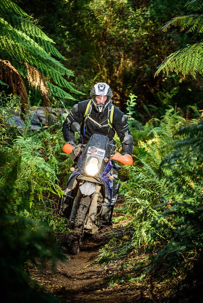 2019 KTM Australia Adventure Rallye (953).jpg