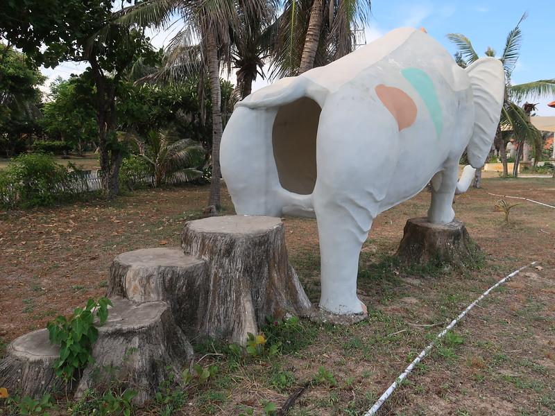 IMG_3385-elephant-poop.JPG