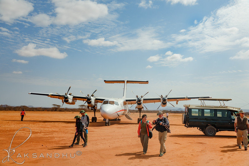 SafariTroop-191.jpg