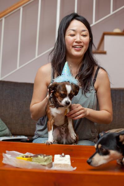 Dog-sushi-halloween2-21.jpg