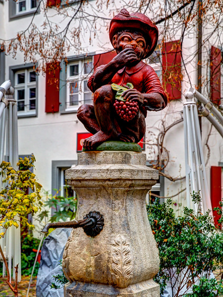 Silly monkey, grapes are for kids! Basel, Switzerland