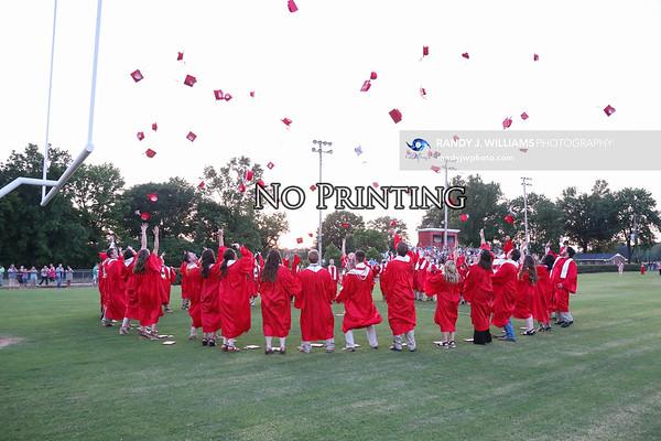 Walnut's Graduation