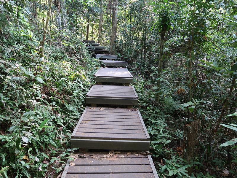 IMG_5258-walking-path.JPG