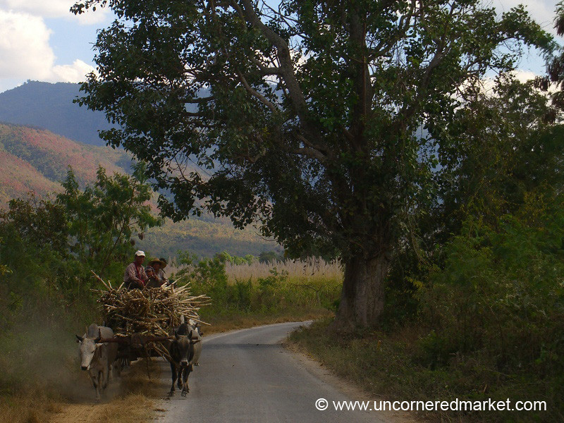 Rural Transport - Inle Lake, Burma