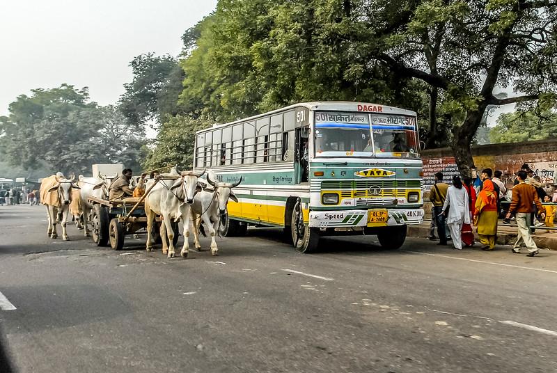 Delhi_1206_412.jpg