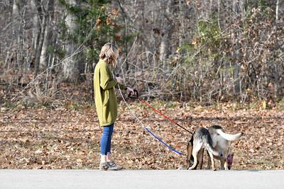 Lauren/Ryan and pups