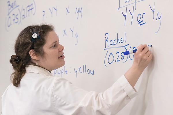 Dr. Lisa Ann Blankenship, Biology