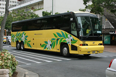Hawaiian Buses & Coaches