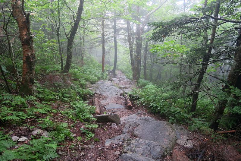 Underwood Trail -- 5,480'