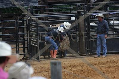 Marion Al. Rodeo saturday night