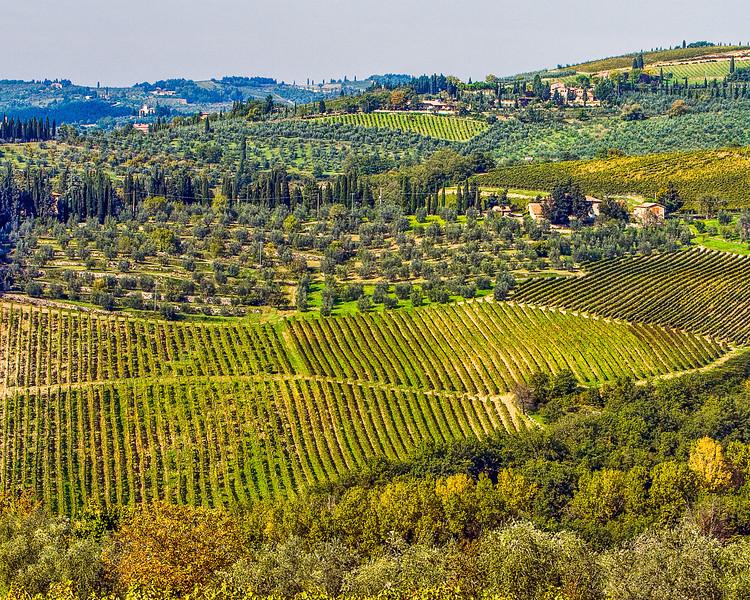 Siena Chianti06.jpg