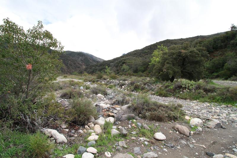 32633-Trabuco-Canyon-Rd-Mitchell-East-Trabuco-Canyon_84.JPG