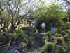 2006-02-01 - Aina Le'a - Pond near Waikola WWTF