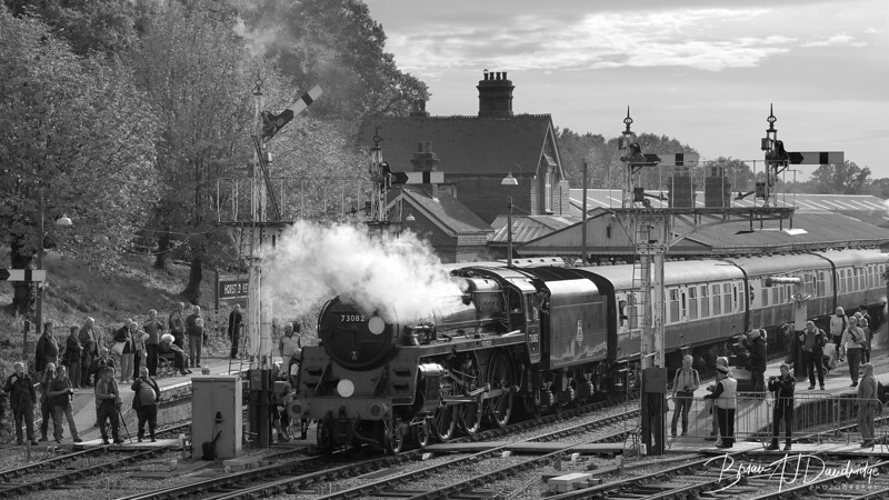 Bluebell Railway - Giants of Steam-4583 - 2-09 pm 1.jpg