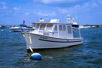 1999 Rosborough 246 Trawler