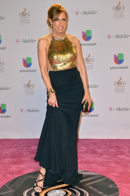 """. Lili Estefan arrives at the 25th Anniversary Of Univision\'s \""""Premio Lo Nuestro A La Musica Latina\"""" on February 21, 2013 in Miami, Florida.  (Photo by Gustavo Caballero/Getty Images for Univision)"""