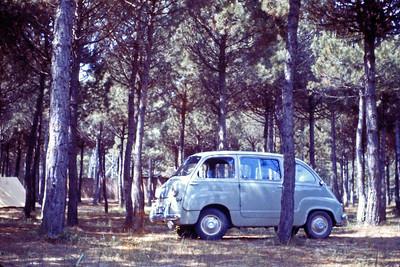 Joe and Thelma's Adventures '60s