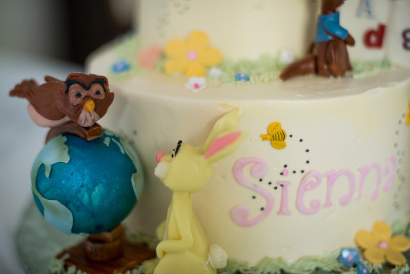 sienna-birthday-party-657-05152014.jpg