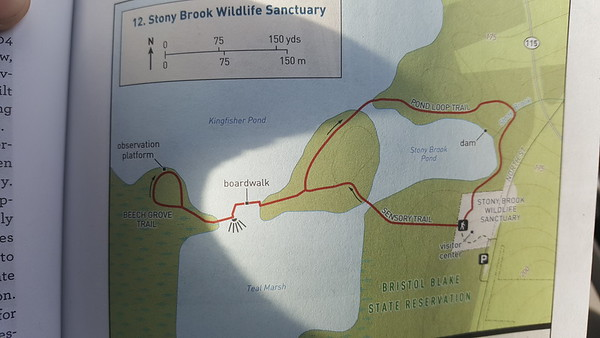 Stony Brook Wildlife Refuge family hike 11.10.19