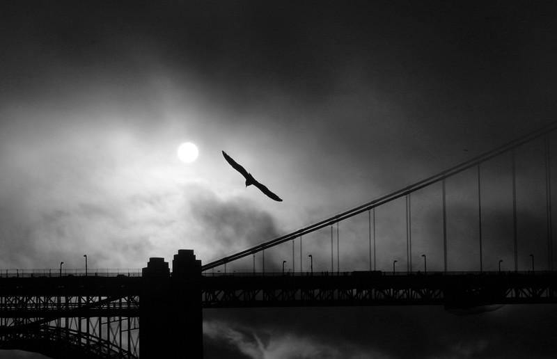 Flying at the Golden Gate Bridge