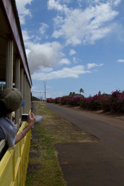 Hawaii2012-3464.jpg