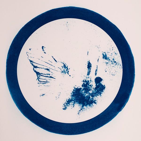 Butterfly Bird circle.jpg