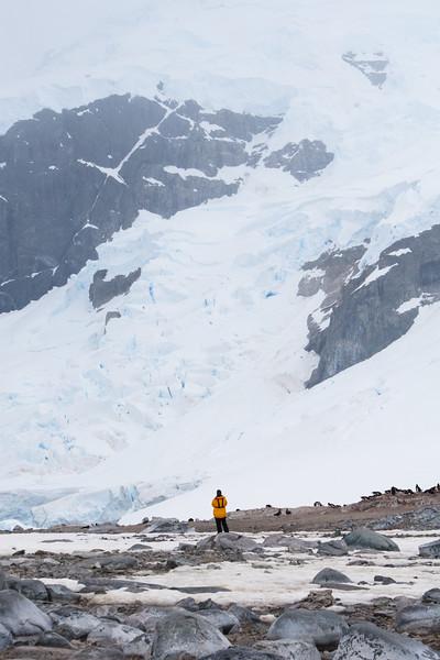 The Glacier Bears Down