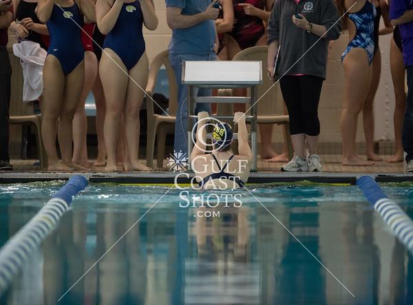 2015-01-24 Swimming HAPPI