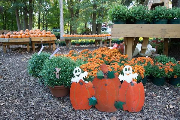 09/30/19 Wesley Bunnell | StaffrrHalloween decorations sit in front of flowers for sale at Karabin Farms in Southington on Monday afternoon.