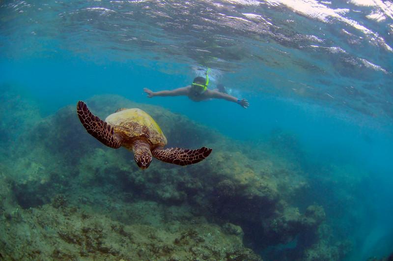 Hawaii - Hanauma Bay-27.JPG