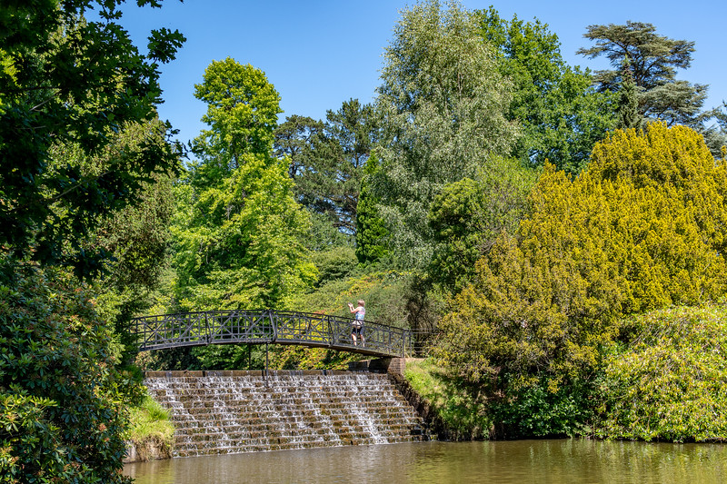 Sheffield Park Gardens (45 of 172).jpg