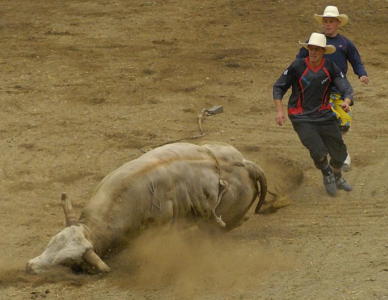 Coombs Ballarama 2008-3-28.jpg