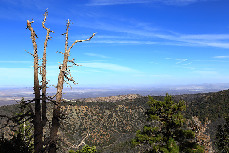 From Angels Crest Highway, Angels National Forest