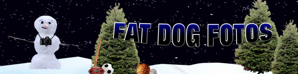 Snowman Fat Dog Logo LITE STRING   TWO  SMUG SIZR1000x250 pixels 2010