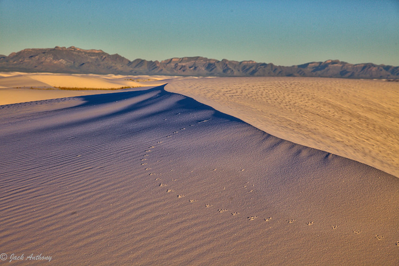VWhite Sands National Monument, New Mexico