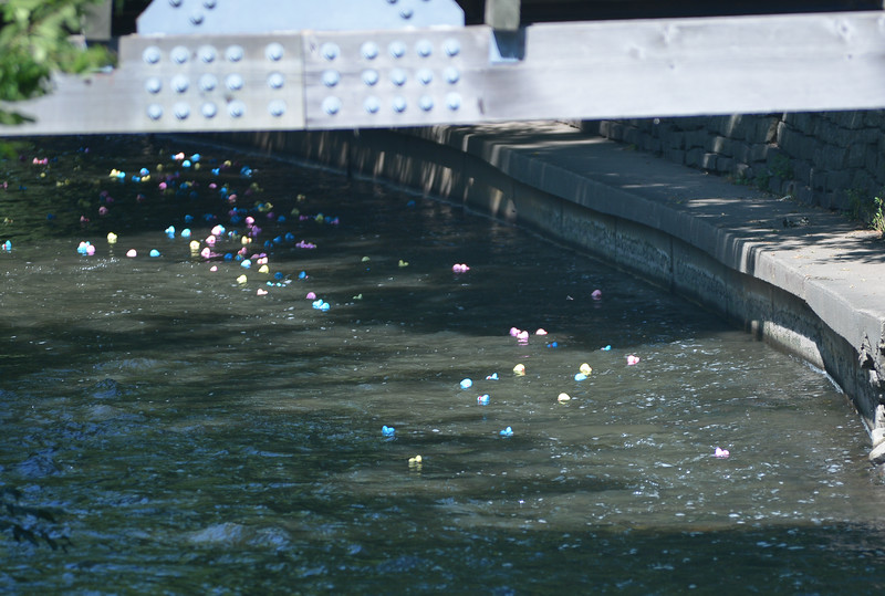 Riverwalk Duck Race 20162016081692-98.jpg