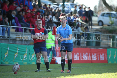 Lions vs Blue Bulls