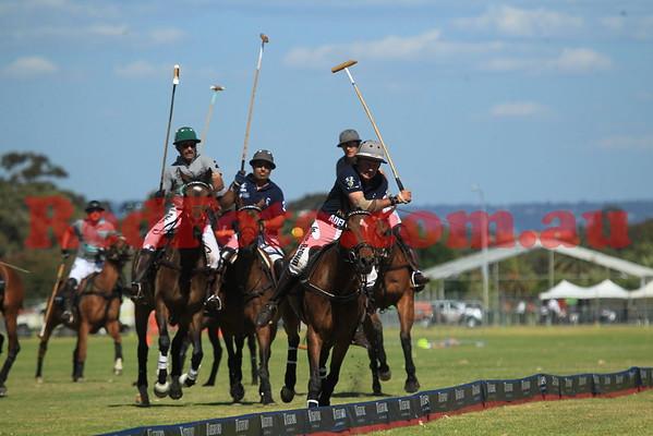Polo in the City Perth