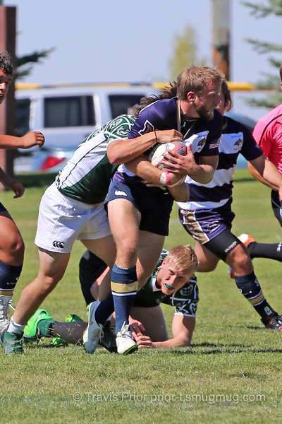 Montana State Rugby I1252457 2015 Jackalope Rugby Tournament.jpg