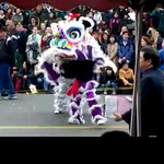 <b>Video Clips - Vancouver's Chinese New Year, Feb. '07 </b>