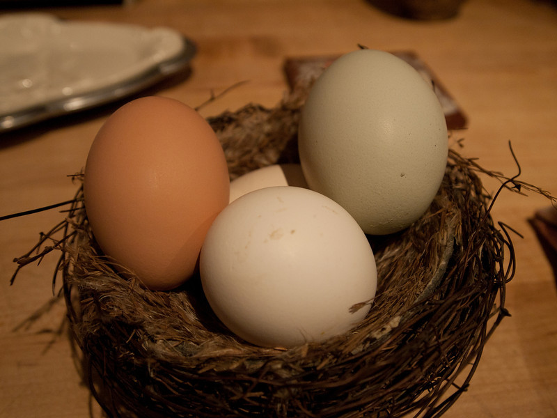 5/24 - Casa Gallina does not offer a prepared breakfast, but we did have a colorful supply of eggs from the resident hens.  When we arrived, there were also a variety of small appetizers on the dining table and a bottle of wine.
