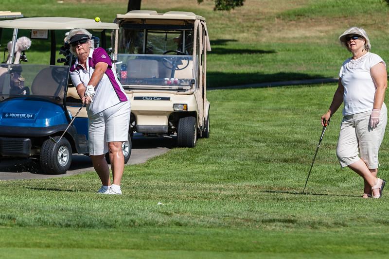 Golf-0801.jpg