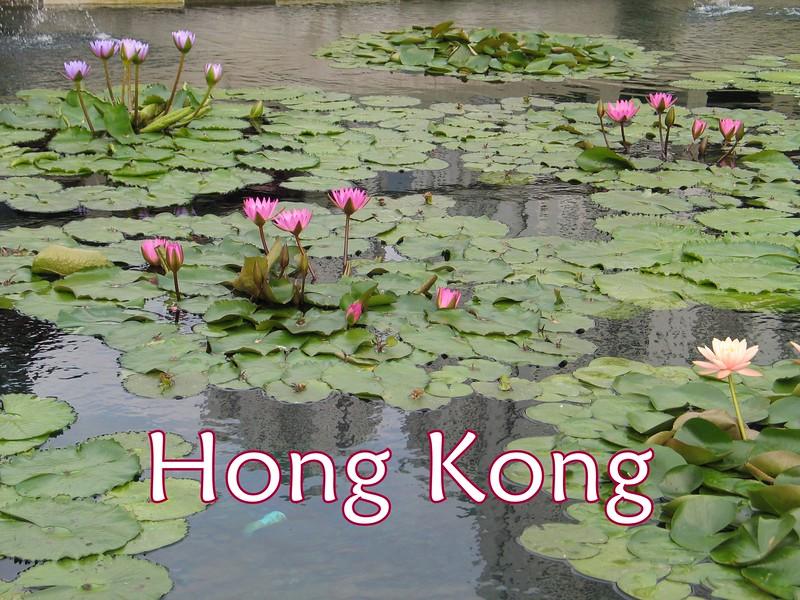 waterlilies.jpg