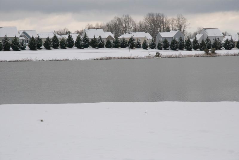 SnowFeb13-14.jpg